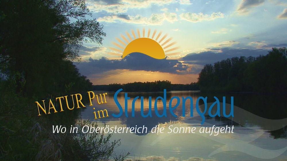 Logo Natur Pur im Strudengau