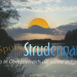 Logo Sport im Strudengau